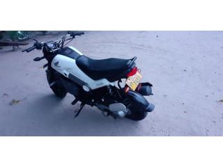 Honda navi sale in sri lanka Jaffna chavakachcheri