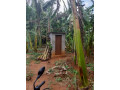 land-for-sale-in-jaffna-small-2