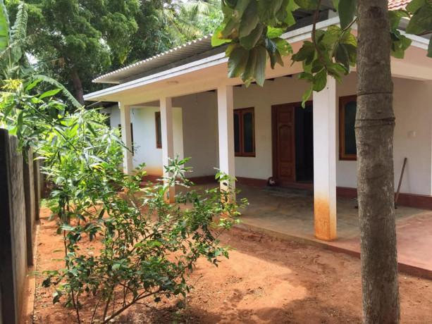 house-with-land-for-sales-at-sabapathy-lane-jaffna-big-1